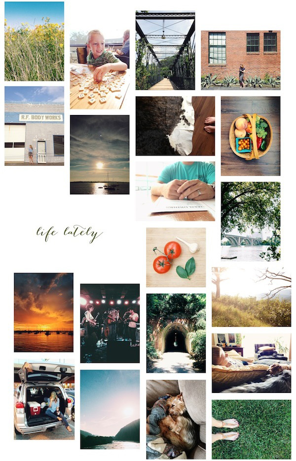 life lately / a thousand threads